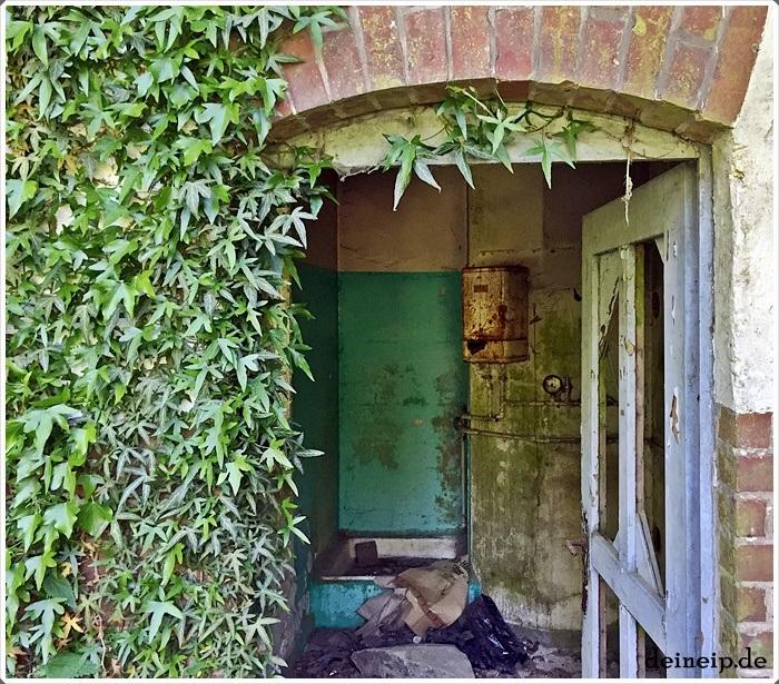 Lost Places Hunsr�ck: Kleines Haus Bei Königstein Am Waldrand