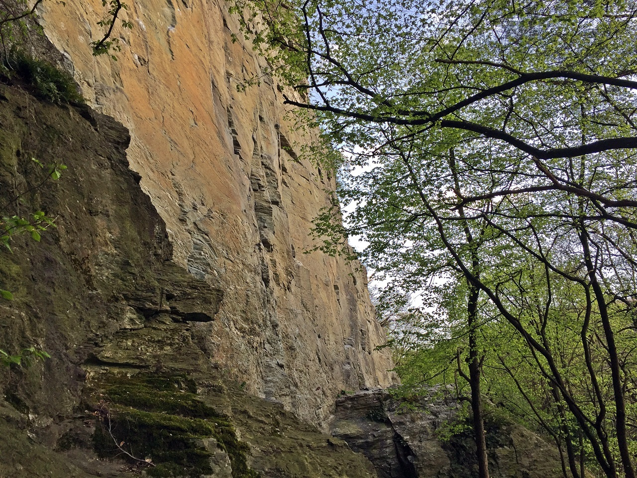 walterstein lorsbach eppstein naturschutzgebiet